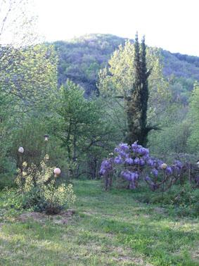 Ch teau du pin jardin remarquable les jardins du pin for Vers du jardin