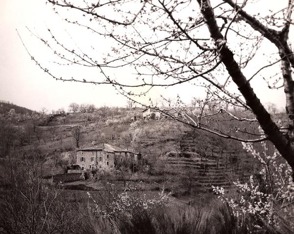 Le château du Pin en 1958, vue d'ensemble.