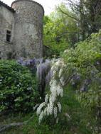 Jardins du Pin - Printemps 2011