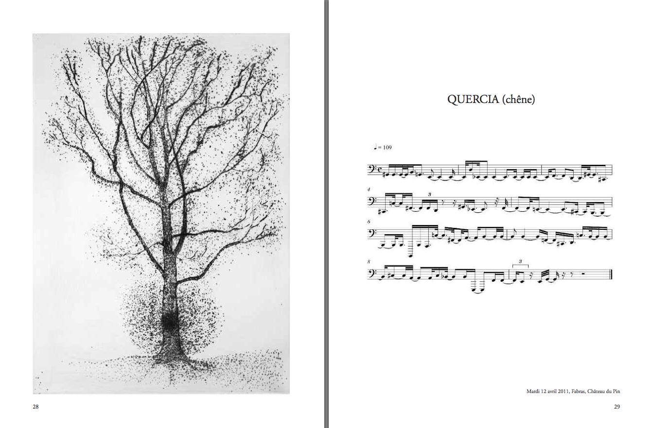 """Giuseppe Penone, """"Transcription musicale de la structure des arbres"""", """"Quercia (chêne)"""", un arbre des jardins du Pin. gravure et partition, extrait du livre éponyme, éd. Bernard Chauveau. DR"""